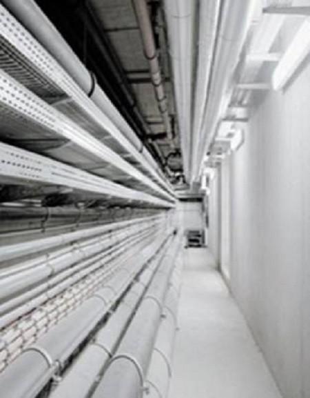 Detecção linear por fibra ótica